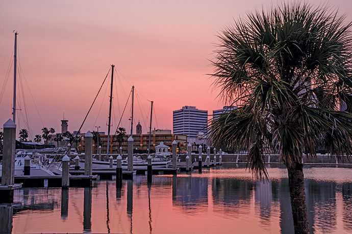 Corpus Christi marina and palms at sunset