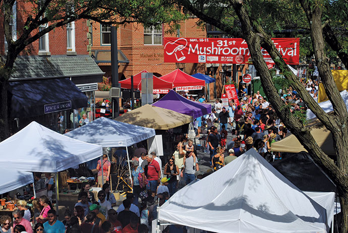 The Mushroom Festival attracts <br />more than 250 vendors.