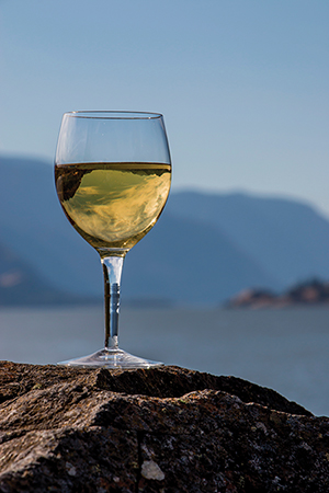 white wine on the rocks