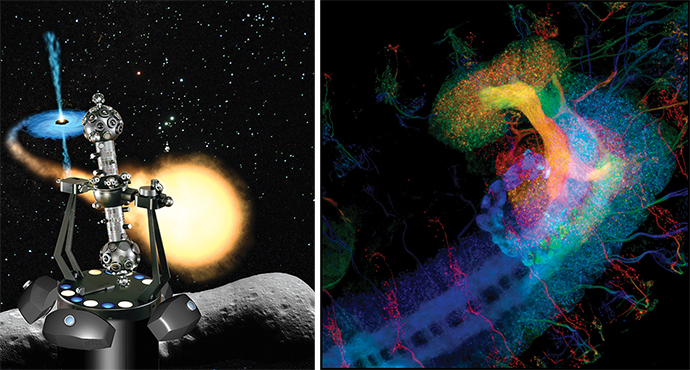 diptych of Zeiss Planetarium and Drosophila