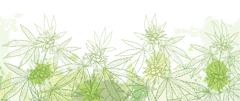 INDUSTRIAL HEMP & CANNABIS